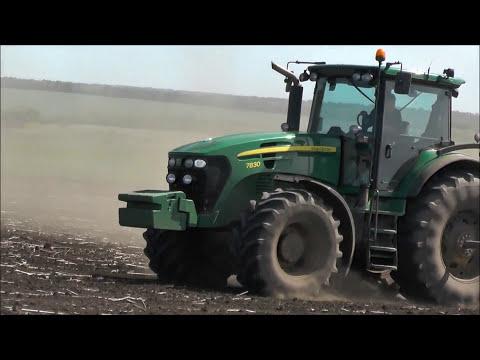 Выращивание кукурузы на зерно по предшественнику подсолнечник