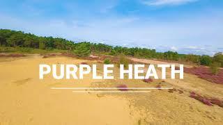 Purple Heath in FPV