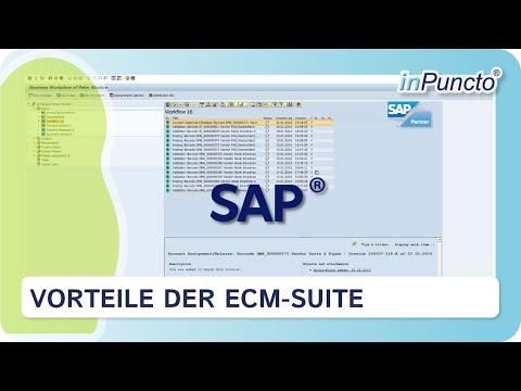 Vorteile der SAP-Integration unserer ECM-Suite