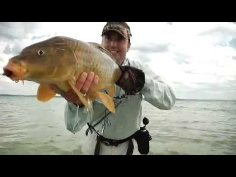 Pesca de Carpas. Midwest Tour: The Northern Angler