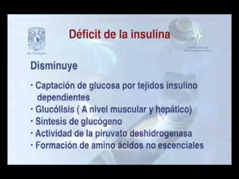 Productos de mesa para disminuir la glucemia