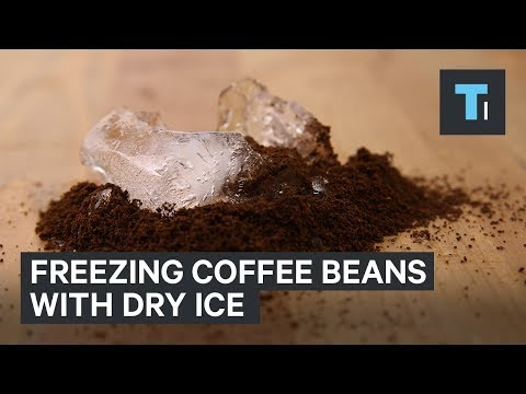 The Top Coffee Server In The US Puts His Beans Through A Deep Freeze
