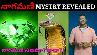 Nagamani Mystry Revealed - Facts about Snakes | In Telugu | paper boy