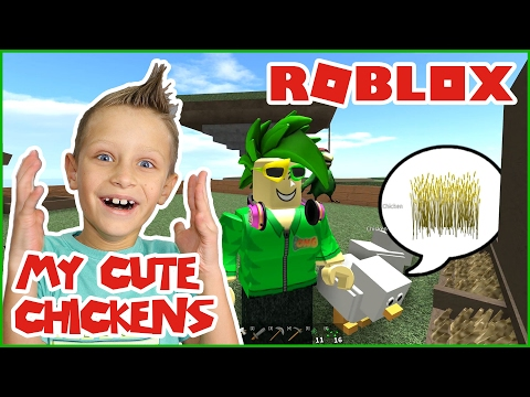 My Cute Chickens are Eating Wheat! / Roblox Skyblock 2