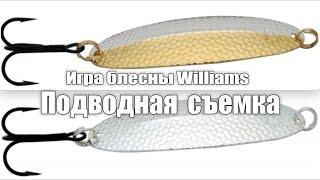 William блесна колеблющаяся