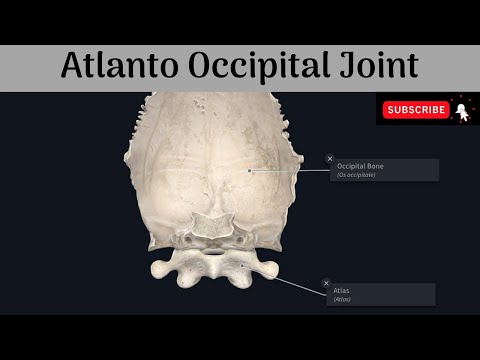 Cel mai bun tratament pentru artroza piciorului