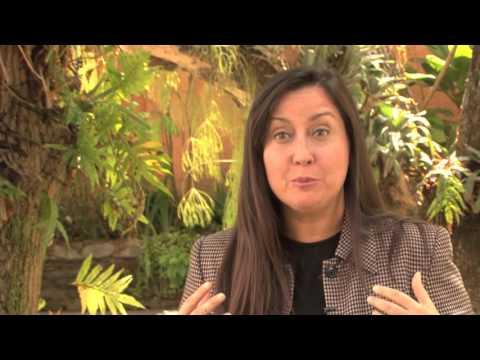 Programa de Visitantes de la Unión Europea, EUVP - Delegación de la Unión Europea en Venezuela