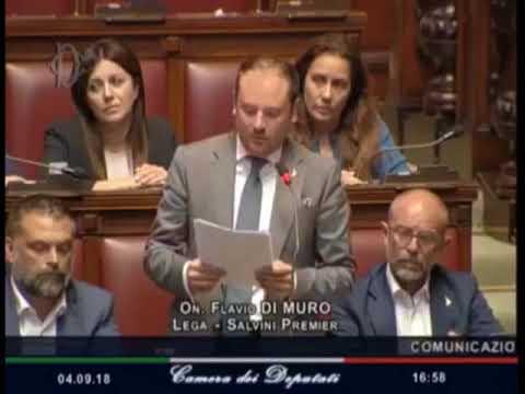 L'INTERVENTO DELL'ONOREVOLE FLAVIO DI MURO SUL PONTE MORANDI