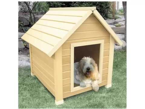 Dog House Designs Set Of Pictures And Ideas - Dog Accessories & Products