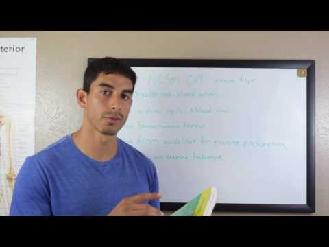 Tips for Studying for the ACSM Certified Personal Trainer Exam ...