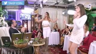 Kediciklerden Muhteşem Dans Show 4