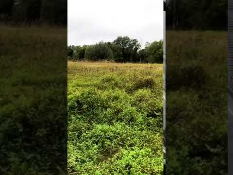 Video Of Afton State Park, MN