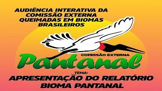 Queimadas - Apresentação do Relatório Bioma Pantanal - None