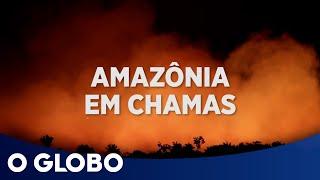 Fogo na Amazônia: o Brasil no centro de uma crise ambiental