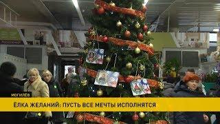 «Ёлка желаний» в Могилёве: сделать подарок ребенку из приюта