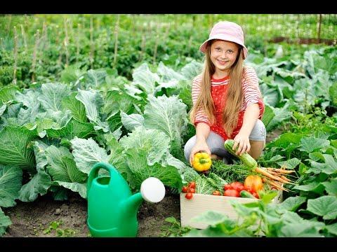 Teaching children the joy of gardening