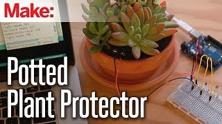 Weekend Projects - Potted Plant Protector