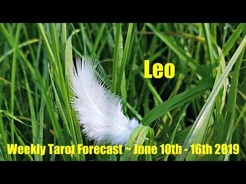 LEO - ACTION AFTER STAGNATION - REUNION & BUILDING A SOLID
