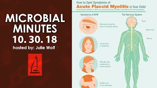 A Scary Time for Outbreaks! Acute Flaccid Paralysis, Salmonella and Ebola