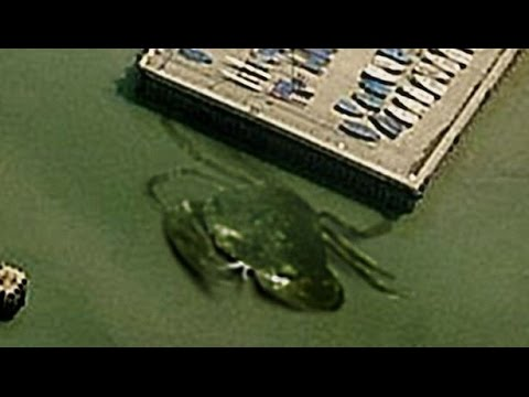 Video 19 BIZARRE Things Found on Google Earth