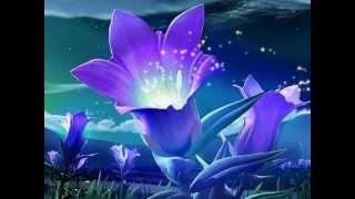 Dil Humne Diya Hai [Full Song] (HD) With Lyrics   - YouTube
