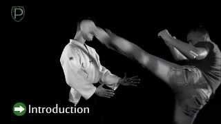 SELF DEFENSE LESSON 9.3 Kick  in the head