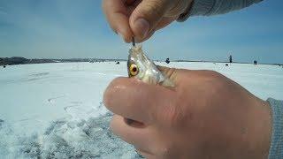 Рыбалка весной, 13.04.18, кандры-куль,