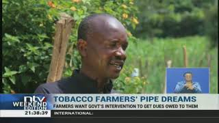 Tobacco farmers in Bungoma county are asking the government to
