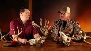 Field Judging Whitetail Deer - Bowhunter Basecamp