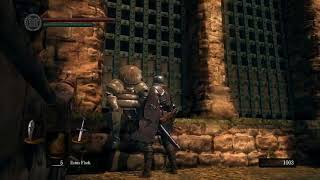 First Meeting With Siegmeyer of Catarina