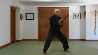 Tensoku Ryu Bo Nidan Kata Introduction
