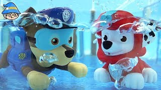 Paw Patrol swimming. Monster truck car and bath toys