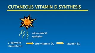 Vitamin D, Sunshine, Optimal Health: Putting it all Together