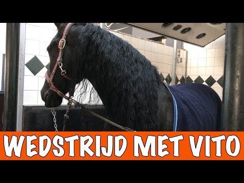 Eerste wedstrijd met VITO!!! | PaardenpraatTV