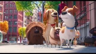 【寵物當家】歡樂預告-6月29日 歡樂登場
