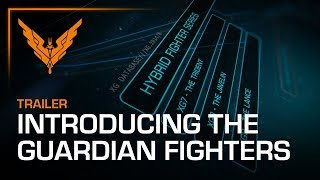 Introducing the Guardian Fighters