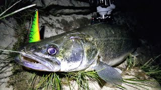 Судак на воблеры вечером и ночью!/Zander fishing on hard-baits in the evening and night!