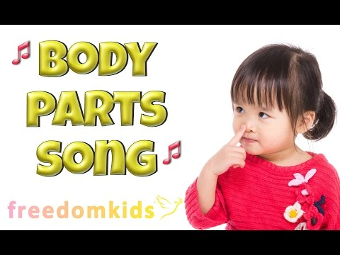 body parts song - 480×360