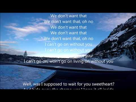 Kaleo - I can't go on without you Lyrics