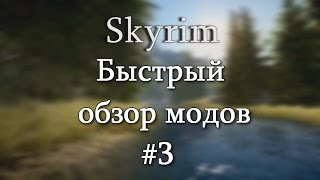 Skyrim: Быстрый обзор модов #3 - Climates Of Tamriel, Grandmaster Ursine Armour, Enhanced Blood