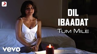 Dil Ibadat Song From Pagalworld