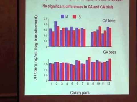 , title : 'Effect of Transportation on Honey Bee Physiology
