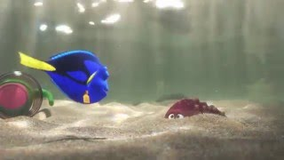 Finding Dory - India Trailer