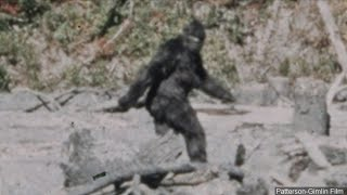 'I know what I saw': Man behind iconic '60s 'Bigfoot' film makes a stop in Fresno