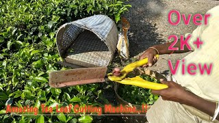 preview picture of video 'Tea Leaf Cutting or Plucking Machine'