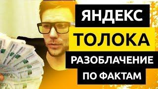 Работа в Яндекс Толока — мое РАЗОБЛАЧЕНИЕ (вся правда)