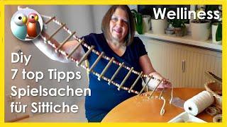 Diy: Wie bastelt man Schaukeln, Leitern, Spielsachen und mehr, für Wellensittich und Co? 7 top Tipps