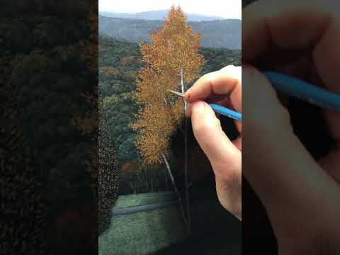 Painting a tree, fourth phase