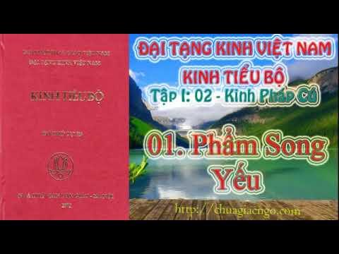 Kinh Tiểu Bộ - 012. Kinh Pháp Cú - 01. Phẩm Song Yếu