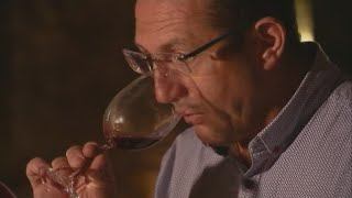 Will global warming ruin French wine production?